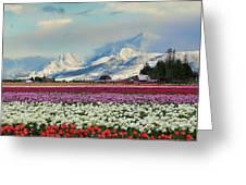 Magic Landscape 1 - Tulips Greeting Card