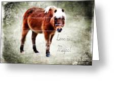 Magic Pony  Greeting Card