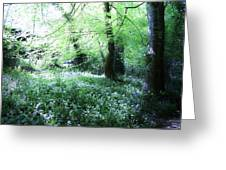 Magical Forest At Blarney Castle Ireland Greeting Card