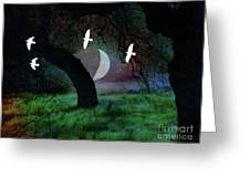 Magical Forest Night Greeting Card