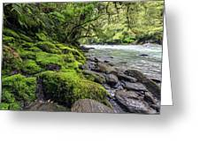 Magical New Zealand Greeting Card
