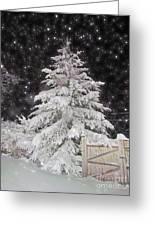 Magical Nighttime Snow Greeting Card
