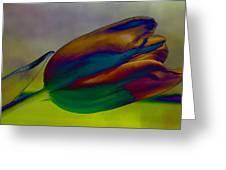 Magical Tulip Greeting Card