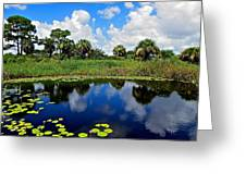 Magical Water Lily Pond 2 Greeting Card