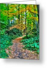 Magical Woodland Walk Greeting Card