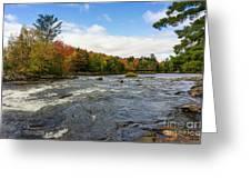 Magnetawan River In Fall Greeting Card