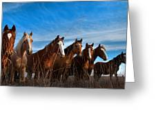 Magnificent Seven Greeting Card