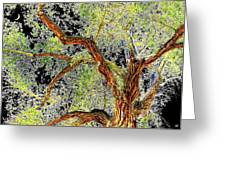 Magnificent Tree Greeting Card