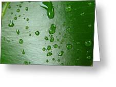 Magnifying Drops Greeting Card