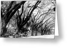Magnolia Ave Greeting Card