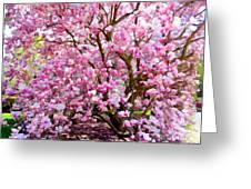 Magnolia Beauty #14 Greeting Card