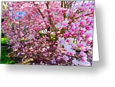 Magnolia Beauty #15 Greeting Card