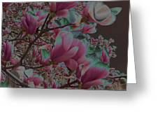 Magnolia Beauty Greeting Card