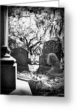 Magnolia Cemetery 75 Greeting Card
