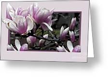 Magnolia Fantasy II Greeting Card