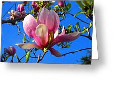 Magnolia Flower Greeting Card