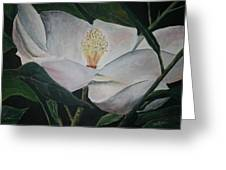 Magnolia Flower Oil Painting Greeting Card