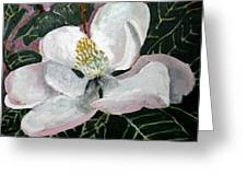 Magnolia Flower Painting Greeting Card