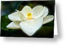 Magnolia In Color Greeting Card