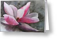 Magnolia In Shadow Greeting Card