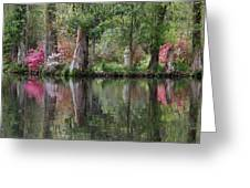 Magnolia Plantation Gardens Series Iv Greeting Card