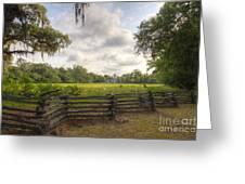 Magnolia Plantation South Carolina Greeting Card