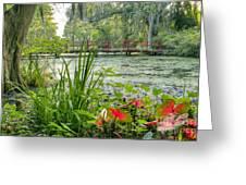 Magnolia Plantation Swamp Garden Greeting Card