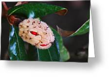 Magnolia Serpent Greeting Card