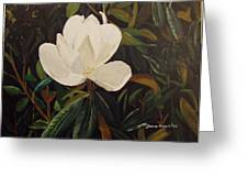 Magnolia Greeting Card by Sharon  De Vore