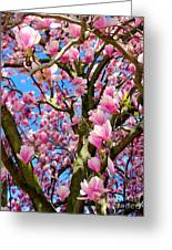 Magnolia Tree Beauty #3 Greeting Card