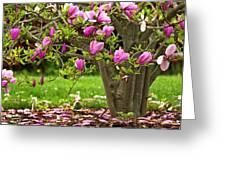 Magnolia Tree Greeting Card