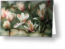 Magnolias In Bloom Greeting Card