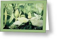 Magnolium Opus Greeting Card