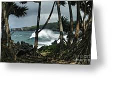 Mahama Lauhala Keanae Peninsula Maui Hawaii Greeting Card