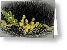 Mahonia Blossom Greeting Card