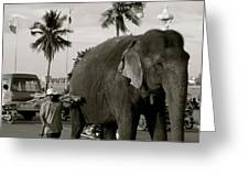 Mahout And Elephant Greeting Card