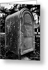 Mail Box Greeting Card by David Lee Thompson
