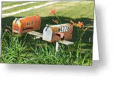 Mail Boxes  Greeting Card