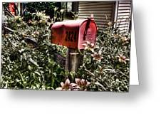 Mailbox Deux Greeting Card