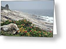 maine 13 Pemaquid Lighthouse Shoreline Before Storm Greeting Card