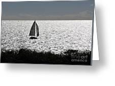 maine 44 Sailboat Greeting Card