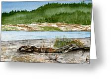 Maine Beach Wood Greeting Card