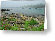 Maine Cove Greeting Card