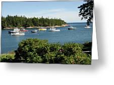 Maine Cove Greeting Card