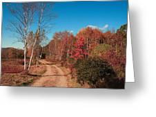 Maine Fall Greeting Card