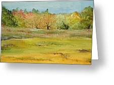 Maine Marsh Greeting Card