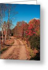 Maine October Greeting Card
