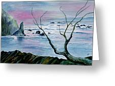 Maine Seawatch Greeting Card