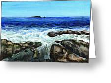 Maine Tidal Pool Greeting Card