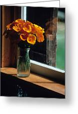 Maine Windowsill Greeting Card